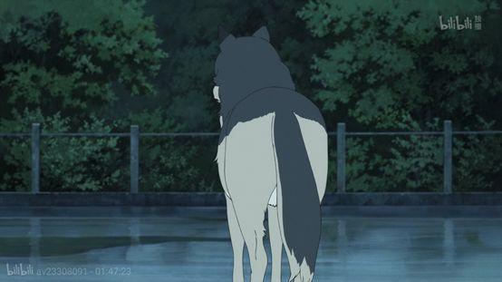 生命之重,成长之痛——《狼的孩子雨和雪》-私会鲁斌