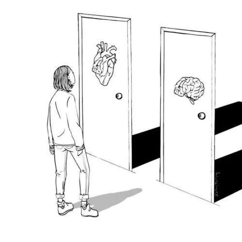 内向者更能够作出好的决策 | 你是哪种类型的决策者?