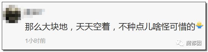 燃爆!中国第一个登陆月球背面!揭开永恒的恐怖黑暗面!