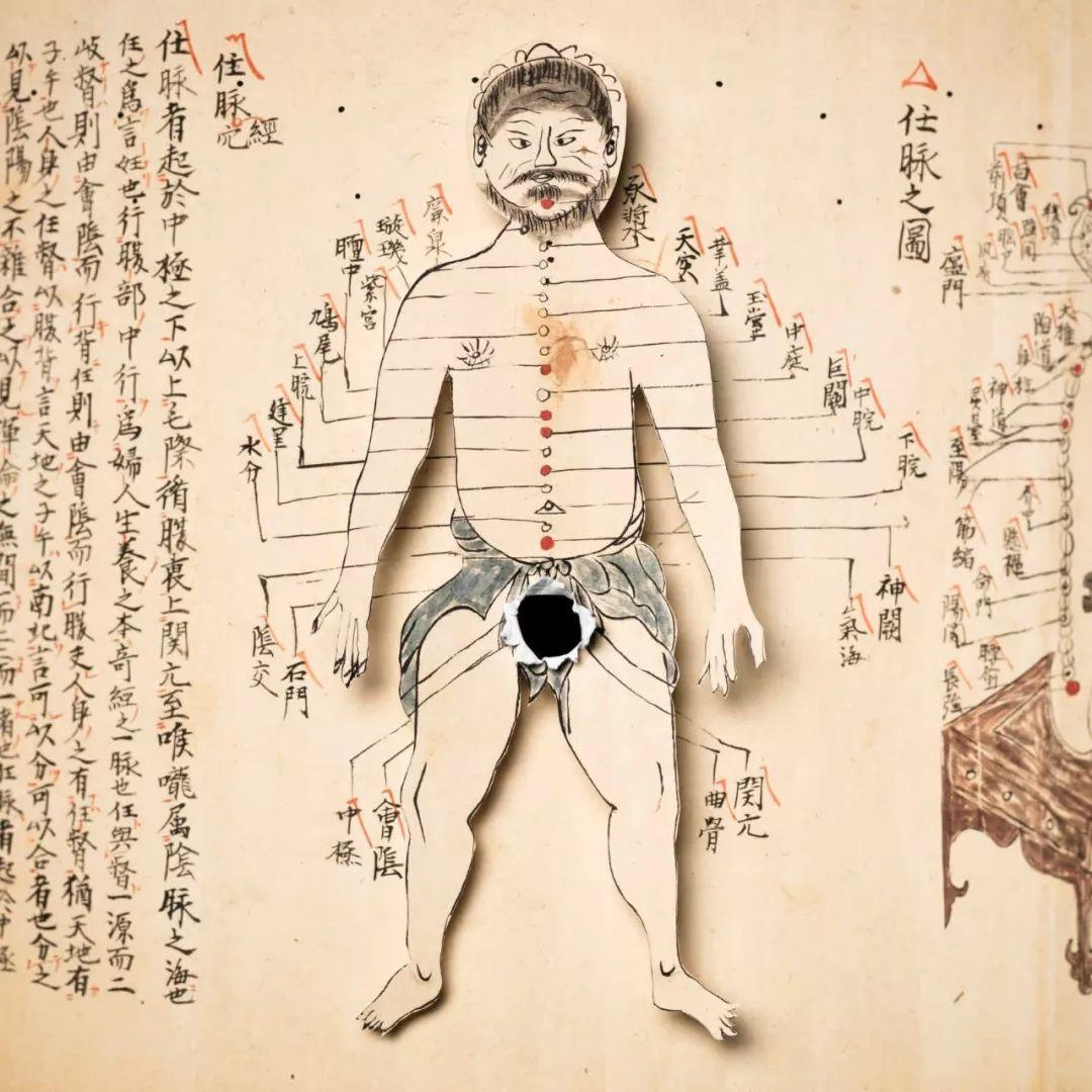 阉割简史与现代医学应用