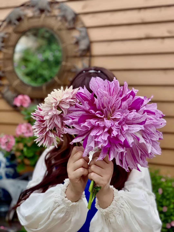 她40岁独自在荒山造1500㎡花园:前半生给家庭,后半生给自己