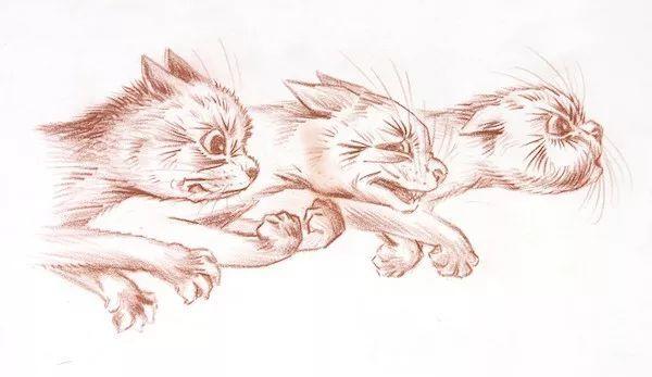 维多利亚时代的猫痴艺术家
