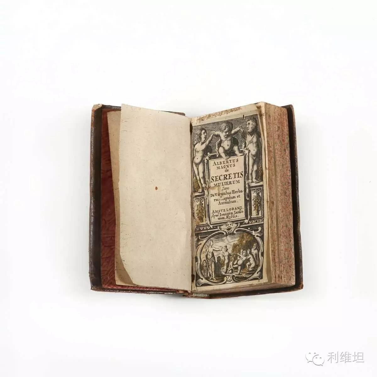 中世纪假装处女指南
