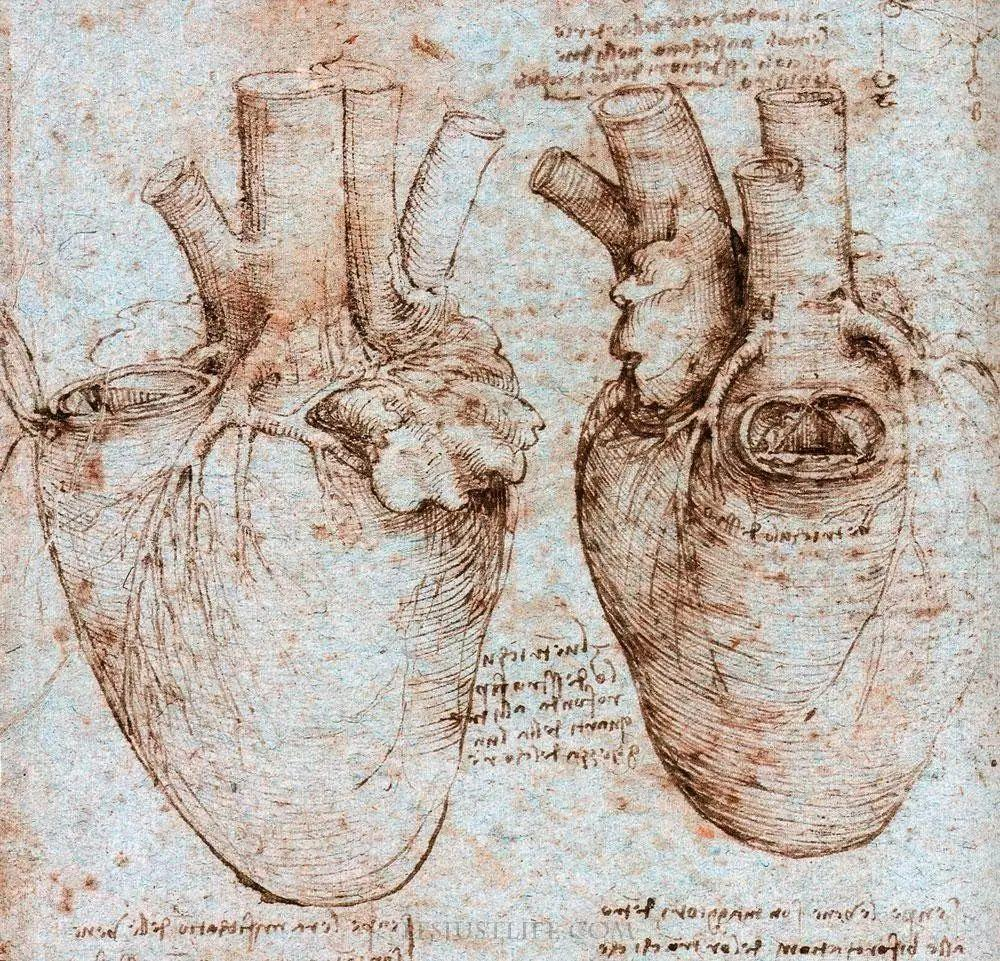心形符号起源考