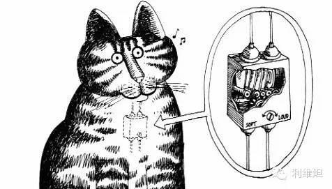 """猫总发出的""""咕噜""""声到底是怎么回事?"""