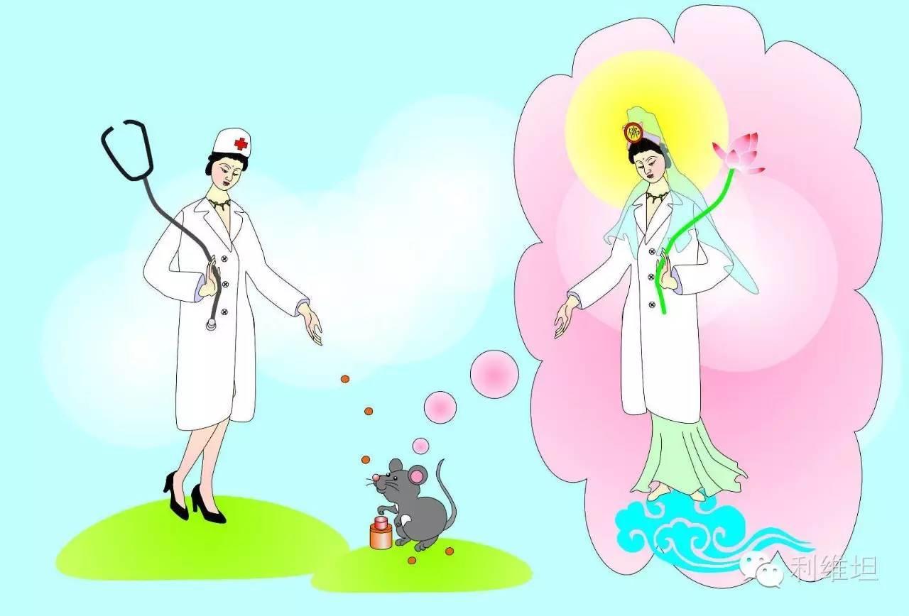 初级佛教现象的神经科学