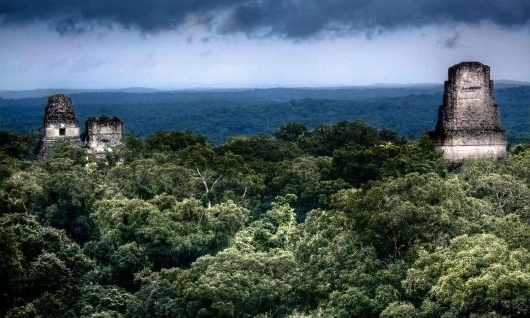 古代文明何以在森林中建造城市?