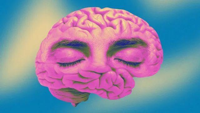 神经科学是否说明心灵只是错觉?